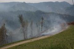 Waldbrand-Leppen-Tag-2-112