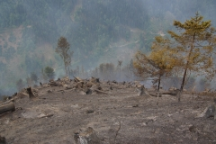 Waldbrand-Leppen-Tag-2-119