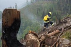 Waldbrand-Leppen-Tag-2-125