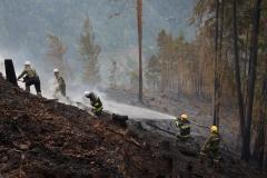 Waldbrand-Leppen-Tag-2-145